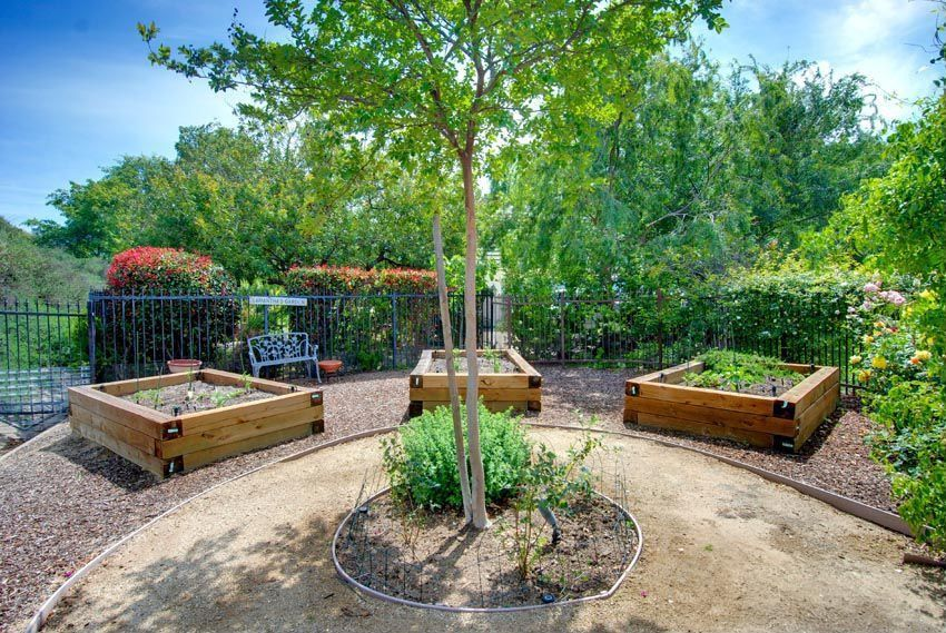 Traditional Landscape/Yard with Raised beds, Gravel landscape, Fence