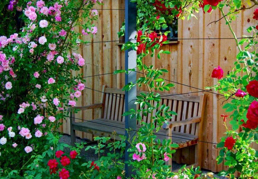 Cottage Landscape/Yard with Landscaping