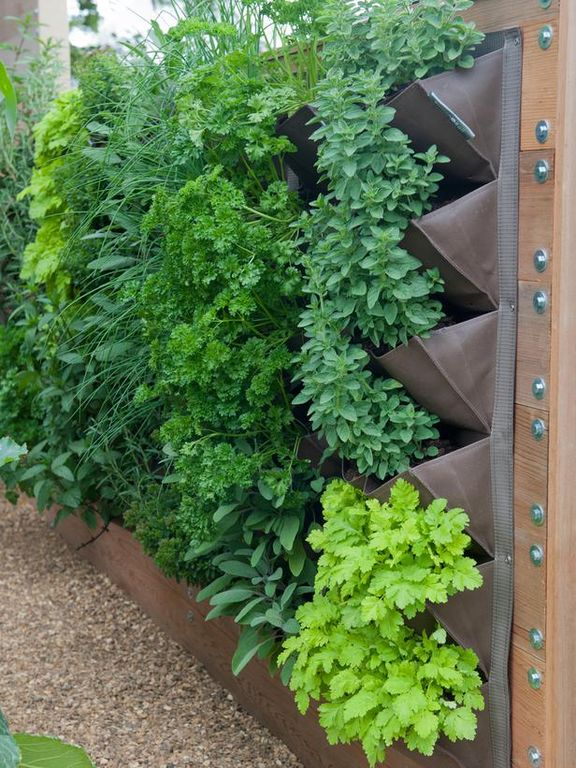 vertical metal planter on wall with ferns