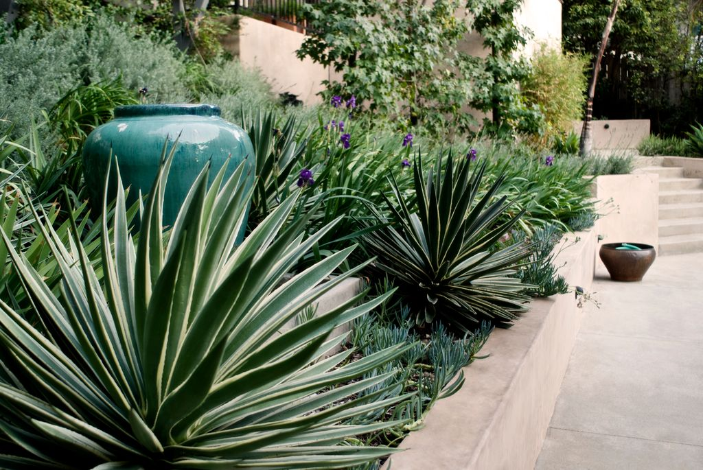 Tropical Landscape/Yard with Pathway, Fence, Raised beds, exterior stone floors