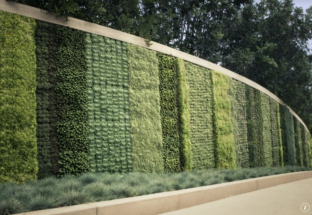 long tall wall with plants growing vertically in beds