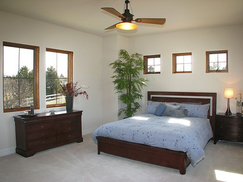 Traditional Guest Bedroom with Standard height, Carpet, Ceiling fan, Casement