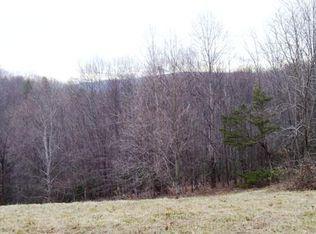 3943 Squirrel Spur Rd , Meadows of Dan VA