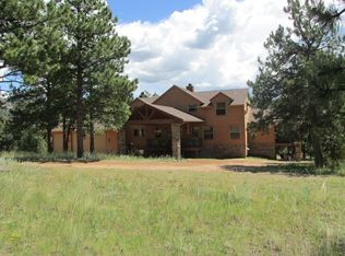 893 Old Ranch Rd, Florissant, CO 80816