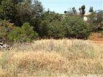 Rancho Tierra Ct, Shingle Spring, CA