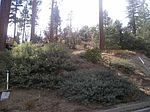 40535 Quail Run, Big Bear Lake, CA