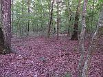 Clear Creek Rd, Evensville, TN