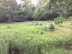 Land - 5 Acre Building Lot On Herrick Road, West Chesterfield, NH