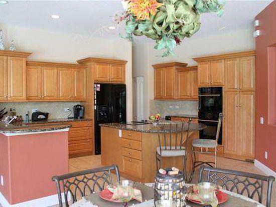 860 Cypress Cove Way, Tarpon Springs, FL 34688