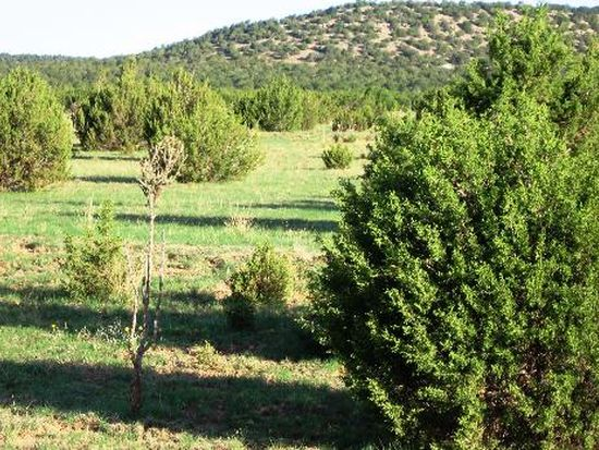 27 Double B Dr, Moriarty, NM 87035
