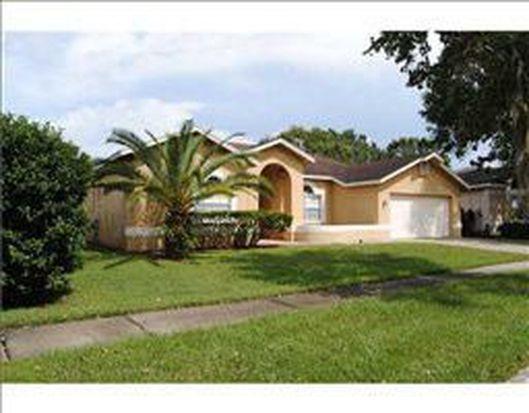9412 Rockrose Dr, Tampa, FL 33647