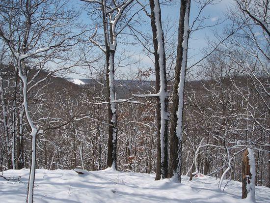 2800 Woods Rd, Wildwood, MO 63040