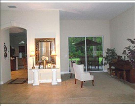 20641 Longleaf Pine Ave, Tampa, FL 33647