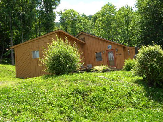 325 Wildflower Ln, Burnsville, NC 28714