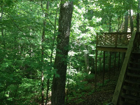 3126 Bee Tree Ln, Signal Mountain, TN 37377