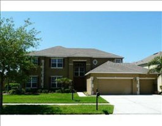 26549 Shoregrass Dr, Wesley Chapel, FL 33544