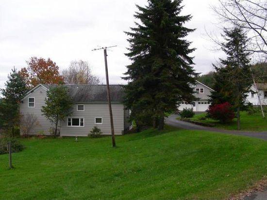 1180 Mill Creek Rd, Otego, NY 13825