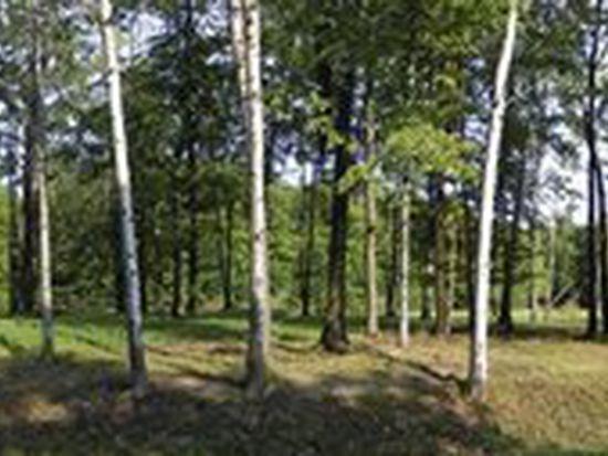 Deer Run Dr, Rock Creek, OH 44084