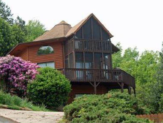 1308 Talona Mountain Rd, Ellijay, GA 30536