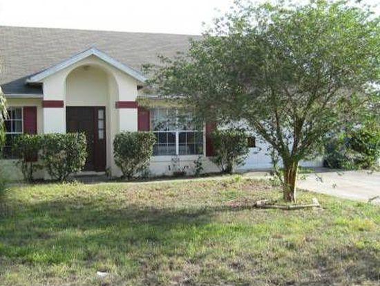 207 Wild Forrest Dr, Davenport, FL 33837