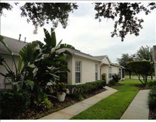 19137 White Wing Pl, Tampa, FL 33647