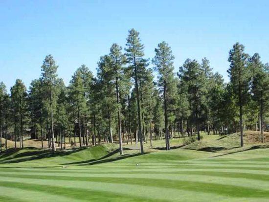 3980 Sugar Pine Loop, Show Low, AZ 85901