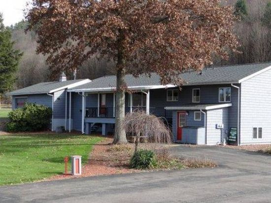 8867 State Highway 357, Franklin, NY 13775