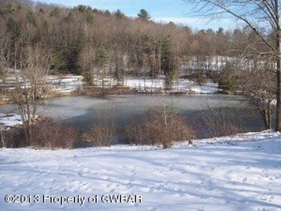 300 Deep Hole Rd, Drums, PA 18222