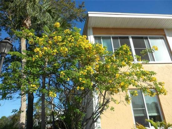 563 99th Ave N APT 101, Saint Petersburg, FL 33702