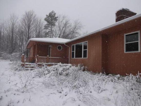 14217 Painesville Warren Rd, Painesville, OH 44077
