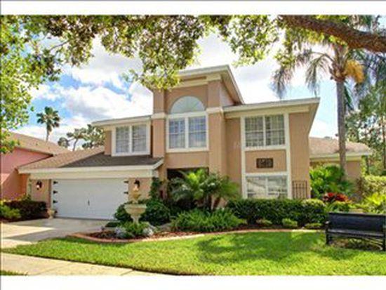 9431 Rockrose Dr, Tampa, FL 33647