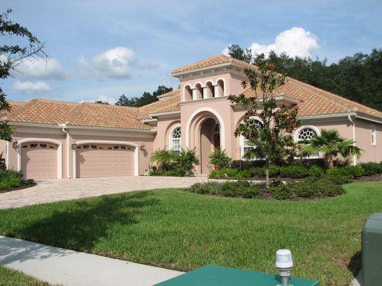 8447 Dunham Station Dr, Tampa, FL 33647