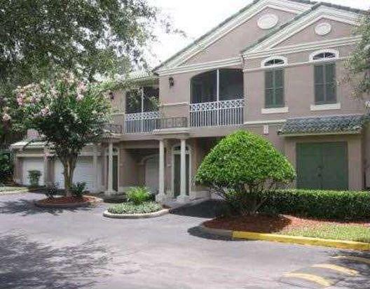 15350 Amberly Dr APT 4422, Tampa, FL 33647