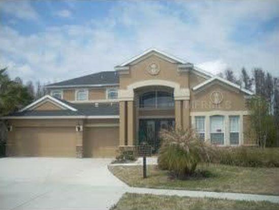8733 Preston Woods Ct, Land O Lakes, FL 34638