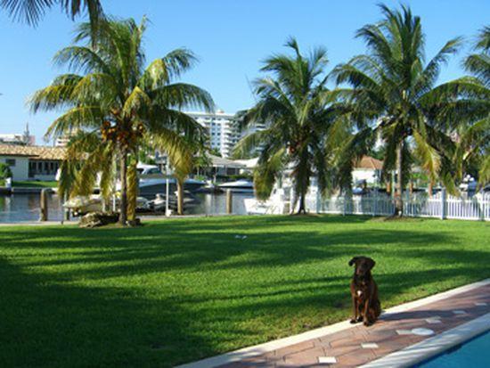 442 Sunset Dr, Hallandale Beach, FL 33009