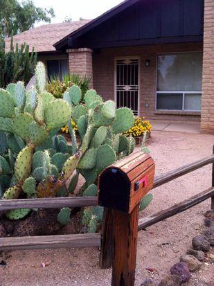 2537 W Bentrup St, Chandler, AZ 85224