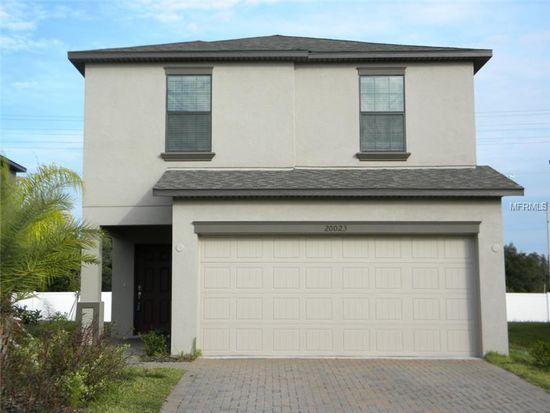 20023 Satin Leaf Ave, Tampa, FL 33647
