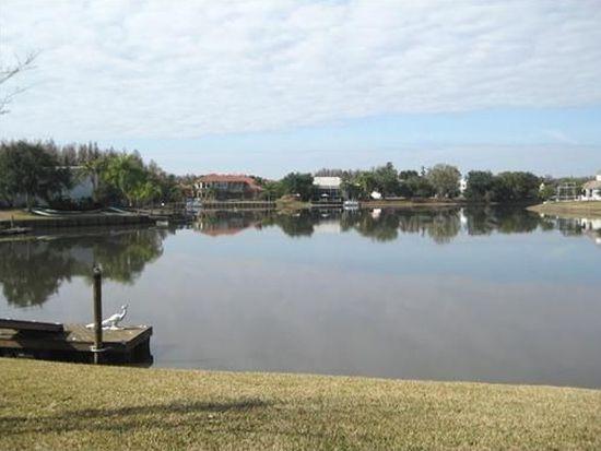 18020 Java Isle Dr, Tampa, FL 33647