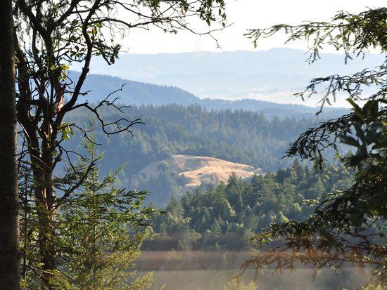 18400 Willow Creek Rd, Occidental, CA 95465