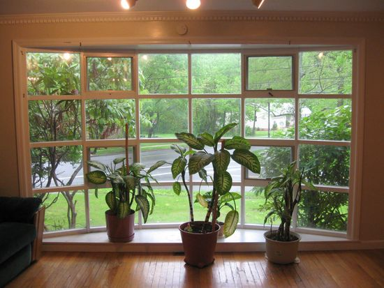 5 Byron Pl, New Haven, CT 06515