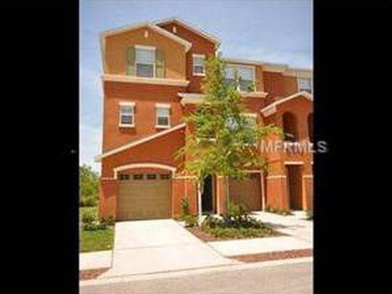 509 Vincinda Crest Way, Tampa, FL 33619