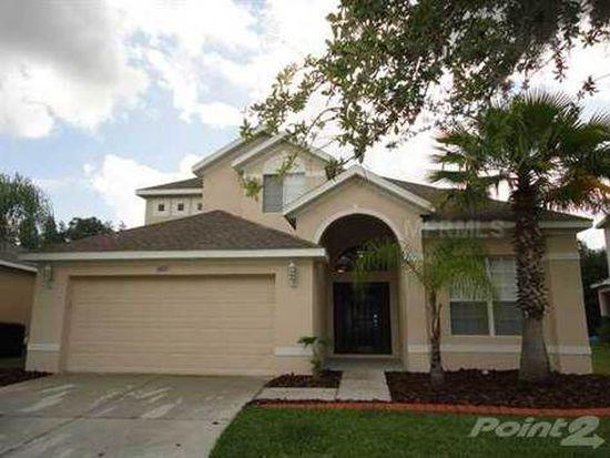 19127 Cypress Reach Ln, Tampa, FL 33647