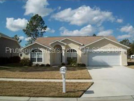 5629 Whitebark Dr, Wesley Chapel, FL 33543