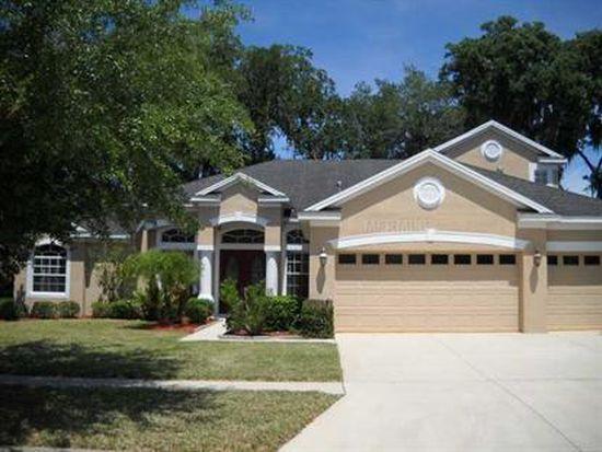 2304 Fountain Grass Dr, Valrico, FL 33594