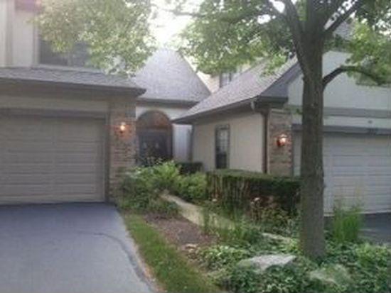 1247 Hobson Oaks Dr, Naperville, IL 60540