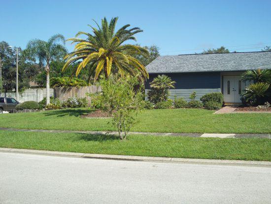 921 Springville Ct, Tampa, FL 33613