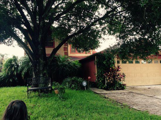 13112 Los Angeles Woods Ln, Orlando, FL 32824