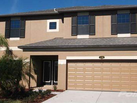 2113 Pacifica Oaks, Brandon, FL 33510