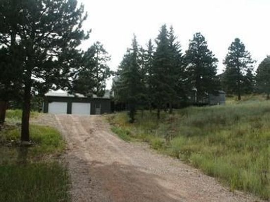 87 Pine Trl, Bailey, CO 80421