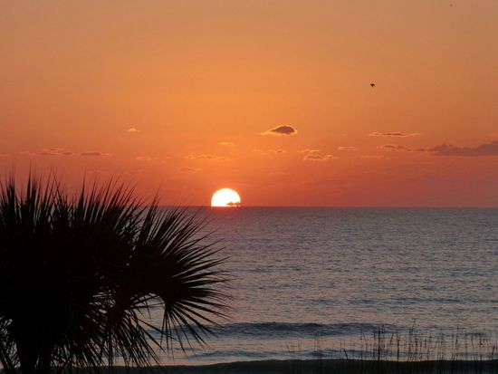 301 N Atlantic Ave APT 204, Cocoa Beach, FL 32931